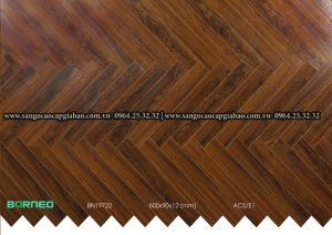 sàn gỗ xương cá borneo BN19722